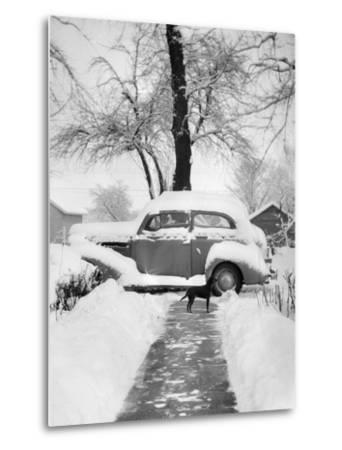 Snowy Scene in Illinois, Ca. 1940--Metal Print