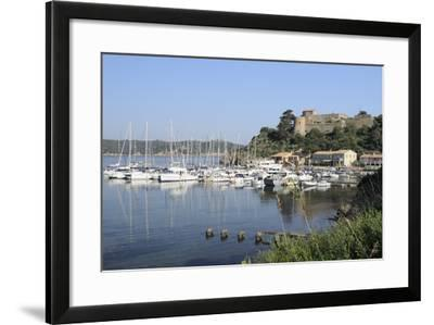 Sailing Yachts and Other Boats Moored at Port Cros Island in Front of Fort De L'Eminence Castle-Nick Upton-Framed Photographic Print