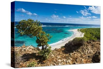View over the Turquoise Waters of Barbuda-Michael Runkel-Stretched Canvas Print