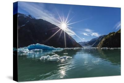 Calved Glacier Ice in Tracy Arm-Ford's Terror Wilderness Area-Michael Nolan-Stretched Canvas Print
