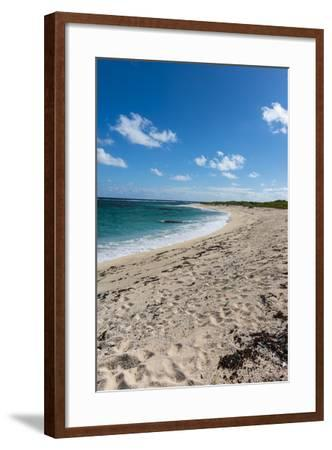 Remote White Sand Beach in Barbuda, Antigua and Barbuda, West Indies, Caribbean, Central America-Michael Runkel-Framed Photographic Print