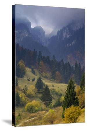 Rock of the King, Piatra Craiului National Park, Transylvania, Carpathian Mountains, Romania-D?rr-Stretched Canvas Print