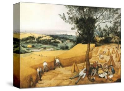The Harvesters-Pieter Bruegel the Elder-Stretched Canvas Print