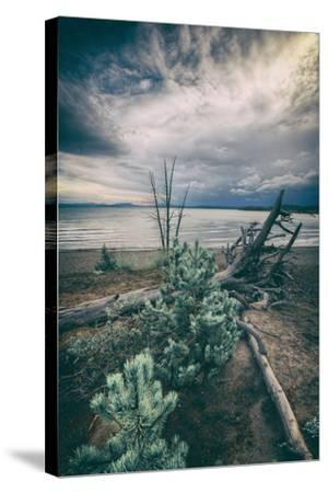 Moody Lakeside Storm, Yellowstone-Vincent James-Stretched Canvas Print