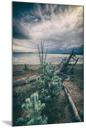 Moody Lakeside Storm, Yellowstone-Vincent James-Mounted Photographic Print