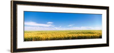 Farm Field Twin Falls Id USA--Framed Photographic Print