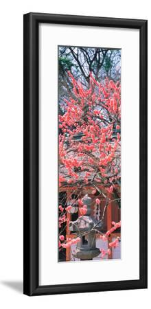 Kitano-Tenmangu Kyoto Japan--Framed Premium Photographic Print