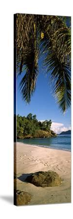 Palm Trees and Rocks on a Small Secluded Beach on North Island, Seychelles--Stretched Canvas Print