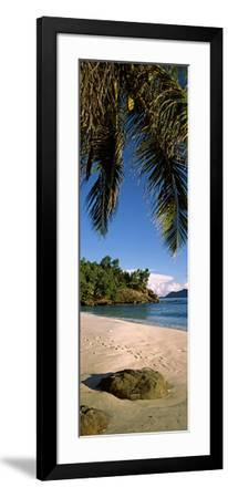 Palm Trees and Rocks on a Small Secluded Beach on North Island, Seychelles--Framed Photographic Print