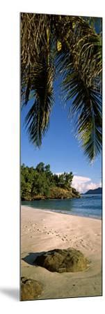 Palm Trees and Rocks on a Small Secluded Beach on North Island, Seychelles--Mounted Photographic Print
