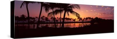 Silhouette of Palm Trees at Sunset, Anaehoomalu Bay, Waikoloa, Hawaii, USA--Stretched Canvas Print