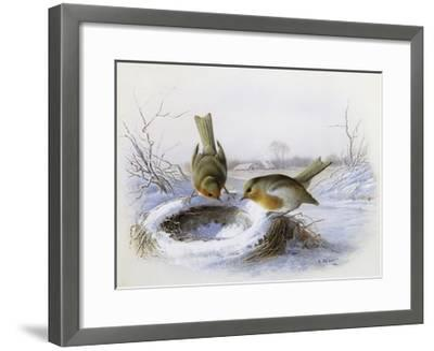 Last Year's Nest-Harry Bright-Framed Giclee Print