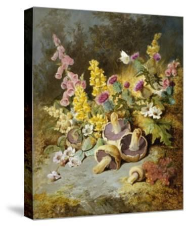 Still Life of Floxgloves, Mushrooms, Snapdragons, and Thistles-Thomas Worsey-Stretched Canvas Print