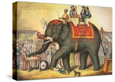 Circus Elephant and Riders--Stretched Canvas Print