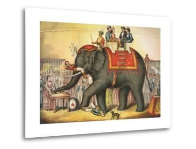 Circus Elephant and Riders--Metal Print