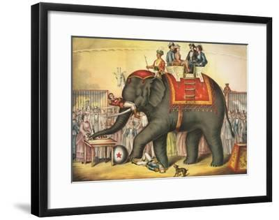 Circus Elephant and Riders--Framed Giclee Print