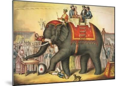 Circus Elephant and Riders--Mounted Giclee Print