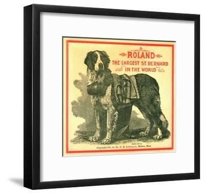 Roland the Largest St. Bernard in the World Trade Card--Framed Giclee Print
