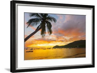 Caribbean, Martinique, Les Anse D'Arlet, Grand Anse Beach-Alan Copson-Framed Photographic Print