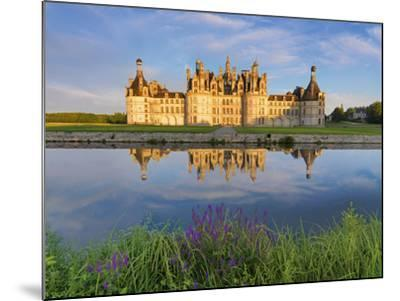 France, Loire Valley, Chateau De Chambord, Detail of Towers-Shaun Egan-Mounted Photographic Print