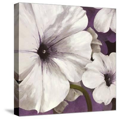 Petunia Array 1-Jurgen Gottschlag-Stretched Canvas Print