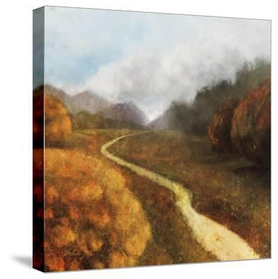 Dream Path 1-Ken Roko-Stretched Canvas Print
