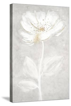 Bianco Fiore 2-Jurgen Gottschlag-Stretched Canvas Print