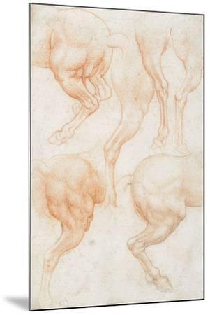 Studies of the Horse Rear Legs-Leonardo da Vinci-Mounted Giclee Print