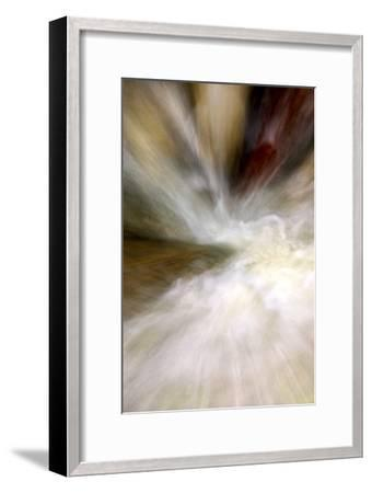 After the Rain II-Douglas Taylor-Framed Premium Photographic Print