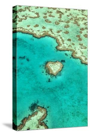 Heart Reef I-Larry Malvin-Stretched Canvas Print
