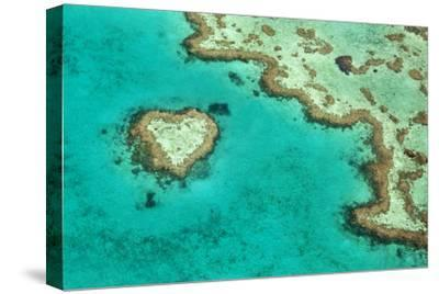 Great Barrier Reef II-Larry Malvin-Stretched Canvas Print