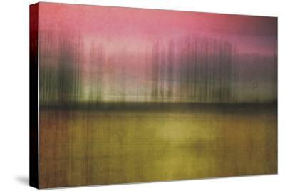 Facade-Roberta Murray-Stretched Canvas Print