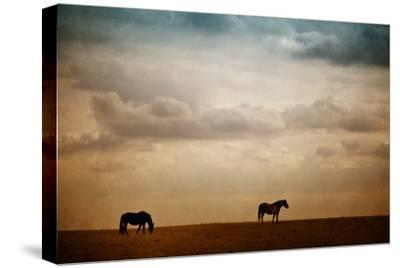 The Lookout-Roberta Murray-Stretched Canvas Print