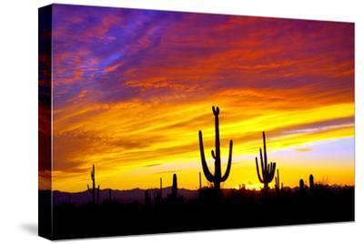 Equinox Sunset-Douglas Taylor-Stretched Canvas Print