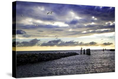 Cedar Island Quay I-Alan Hausenflock-Stretched Canvas Print