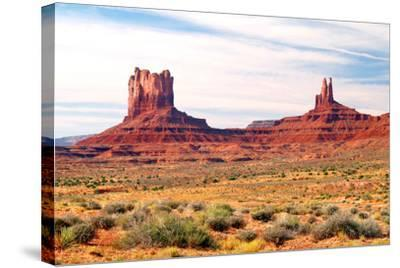 Navajo Country II-Douglas Taylor-Stretched Canvas Print
