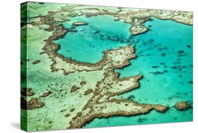 Great Barrier Reef III-Larry Malvin-Stretched Canvas Print