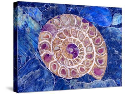 Ammonite in Labradorite-Douglas Taylor-Stretched Canvas Print