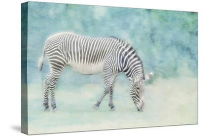 Zoo Crew-Roberta Murray-Stretched Canvas Print