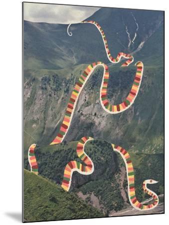 Slinky Snake-Danielle Kroll-Mounted Giclee Print