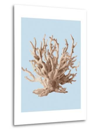 Coral II-Sloane Addison ?-Metal Print