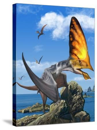 Tupandactylus Perched on a Rock During the Early Cretaceous Period--Stretched Canvas Print