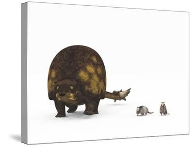 A Doedicurus Glyptodont Compared to Modern Armadillos--Stretched Canvas Print
