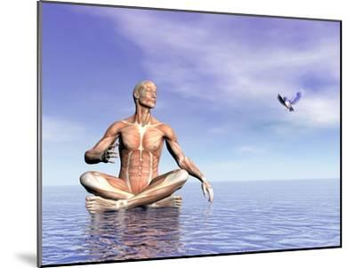 Male Musculature in Lotus Position While Looking at a Little Bird Flying--Mounted Art Print