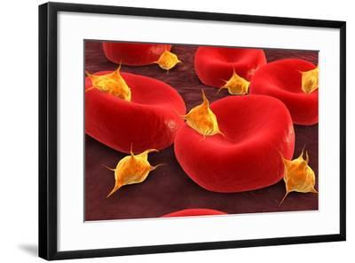 Conceptual Image of Platelets with Red Blood Cells--Framed Art Print