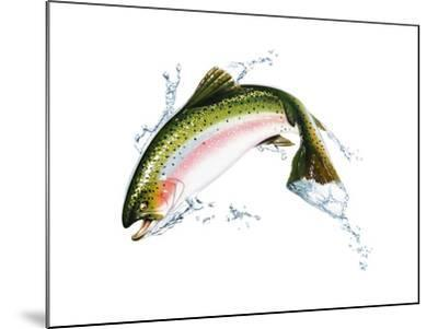 A Pink Salmon Jumping Out of the Water--Mounted Art Print