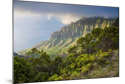 Kalalau Lookout over the Napali Coast from the Kokee State Park-Michael Runkel-Mounted Photographic Print