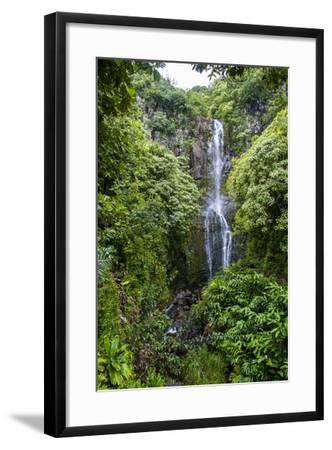 Makahiku Falls on the East Coast of Maui, Hawaii, United States of America, Pacific-Michael Runkel-Framed Photographic Print