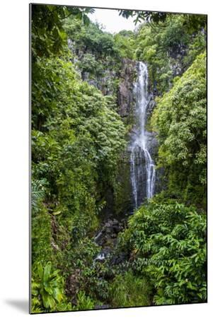 Makahiku Falls on the East Coast of Maui, Hawaii, United States of America, Pacific-Michael Runkel-Mounted Photographic Print