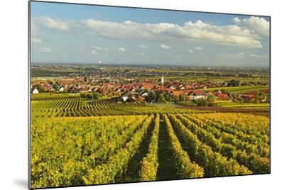 Vineyard Landscape and Maikammer Village, German Wine Route, Rhineland-Palatinate, Germany, Europe-Jochen Schlenker-Mounted Photographic Print
